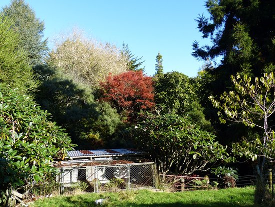 Te Kuiti, New Zealand: Entering the garden paradise created over 40 years