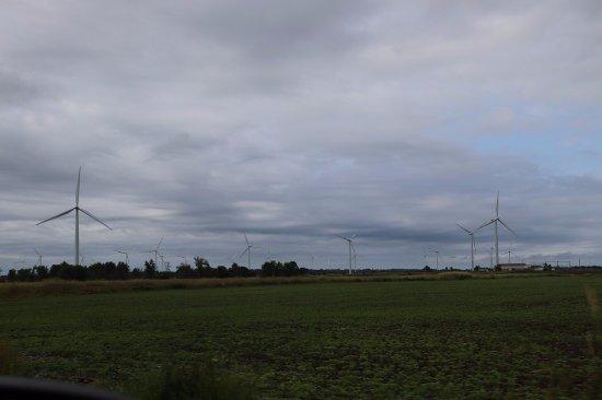 Wolfe Island, Canada: Even more turbines