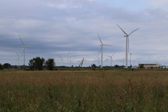 Wolfe Island, Canada: I enjoyed knowing more about these turbines