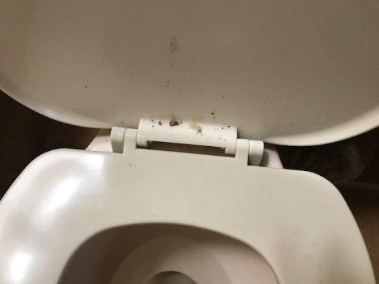 Villas El Rancho Green Resort: gaggy toilet