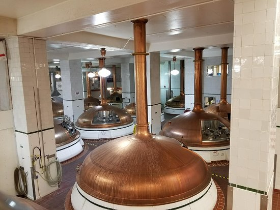 Coors Brewery: Brew room