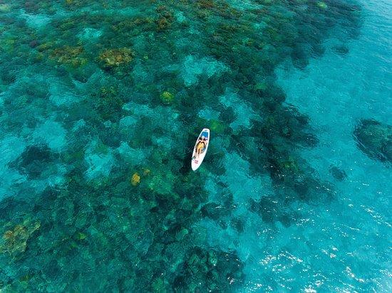 Cape Tribulation, Australia: Kick back and relax