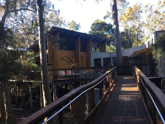 Paperbark Camp: photo4.jpg