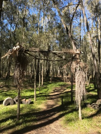 Woollamia, Австралия: photo8.jpg