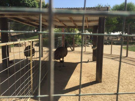 Moorpark, Californie : photo5.jpg