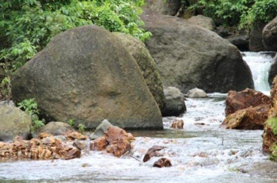 Great Taste of Fiji Sightseeing...