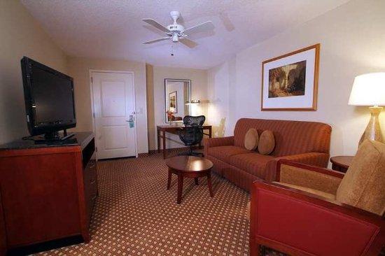 Hilton Garden Inn Nashville/Vanderbilt: Suite Living Area Design Ideas