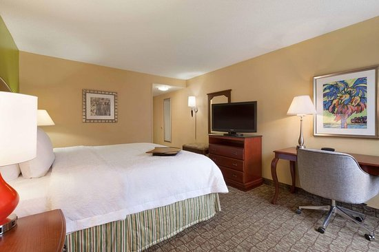 Hampton Inn & Suites Ft. Lauderdale Airport/South Cruise Port: Deluxe Guest Room with a King Bed