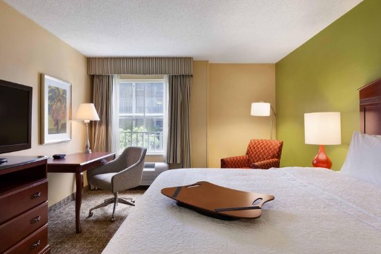 Hampton Inn & Suites Ft. Lauderdale Airport/South Cruise Port: Deluxe King