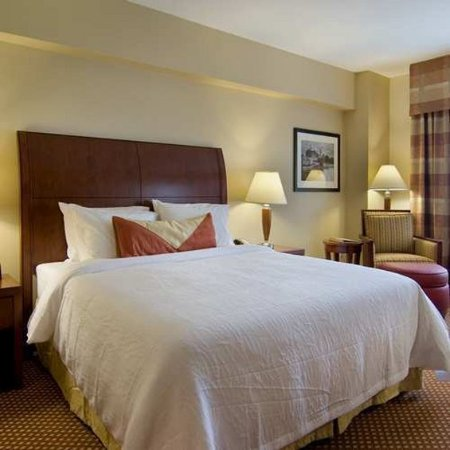 Hilton Garden Inn Houston / Sugar Land: Guest Room