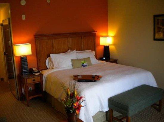 Okeechobee, FL: Guest Room