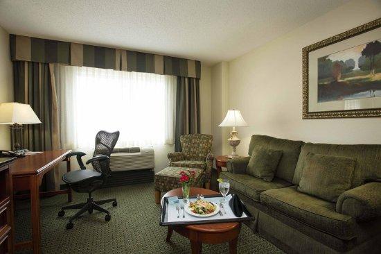 Athens, GA: King Suite Living Room