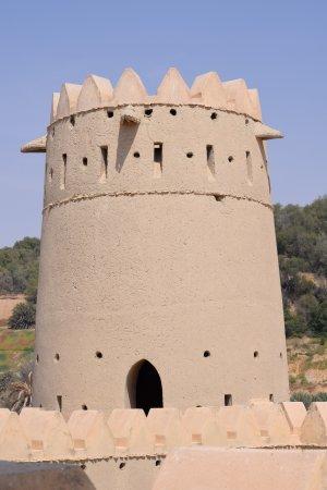 Liwa Oasis-bild