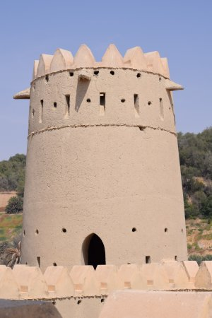 Liwa Oasis Foto