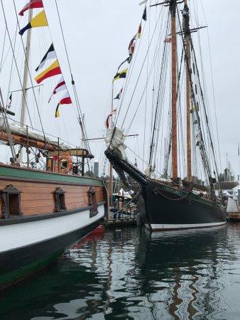 Northwest Maritime Center: Wooden Boat Festival