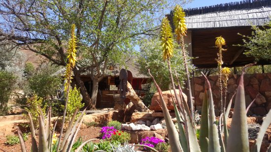 AfricanSwiss Restaurant: Outside Terrace, indigenous gardens.