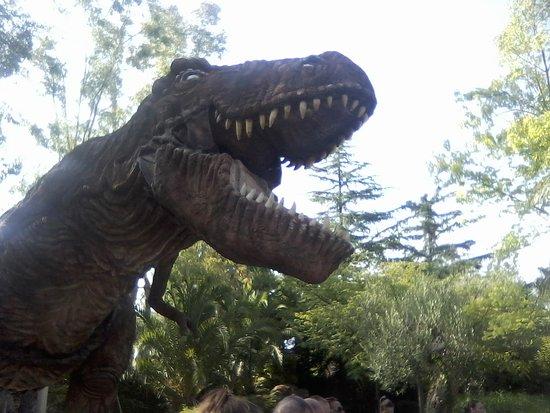 Il Parco dei dinosauri: Particolari
