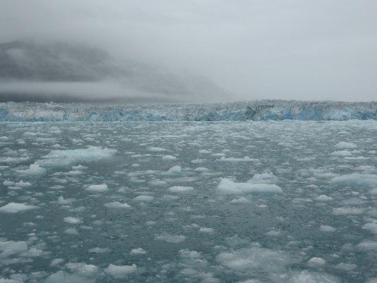 Columbia Glacier Resmi