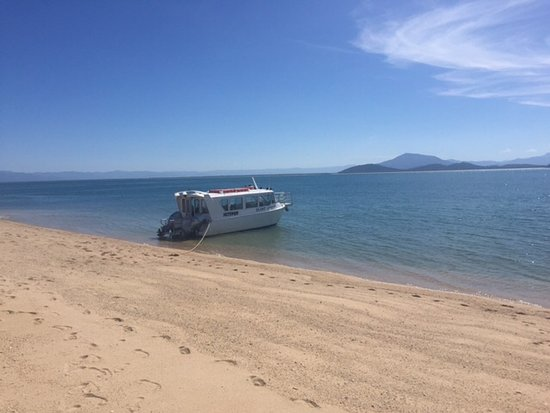 Wongaling Beach, Australia: The boat on Bedarra