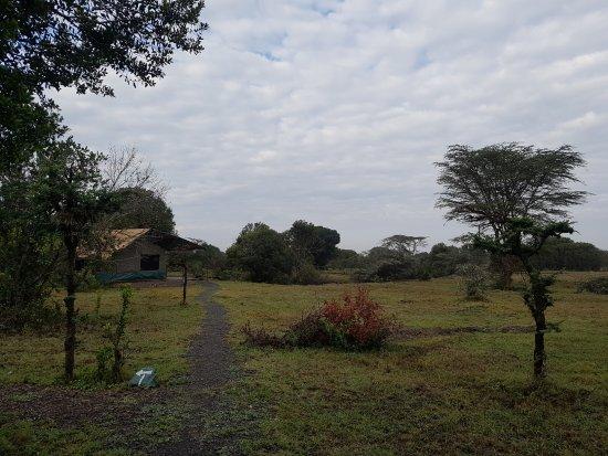 Porini Rhino Camp張圖片