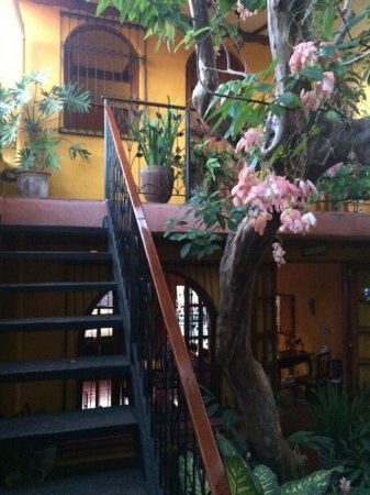 Guesthouse El Nancite: entrance to our room with balcony