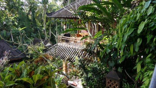 Gustis Garden Bungalows Image
