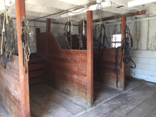Deer Lodge, MT: Stables