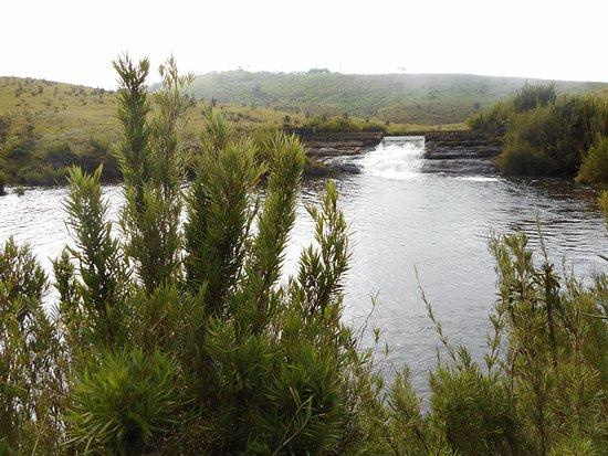 Horton Plains National Park Picture
