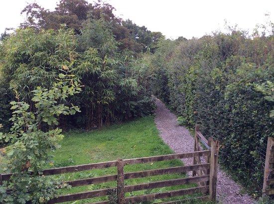 Ennerdale Bridge, UK: The walk from kitchen to the yurt