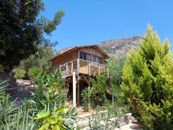 The Olive Garden Fethiye Tyrkiet Campingplads Anmeldelser Sammenligning Af Priser
