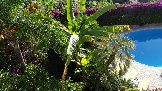 Hotel Albergaria Dias: blick vom Balkon auf Garten und Pool