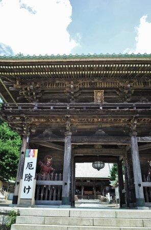 Tokai-mura