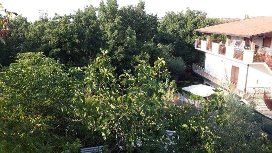 Mascalucia, Italy: Colazione