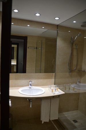 Hotel Gran Ultonia Girona: Baño.