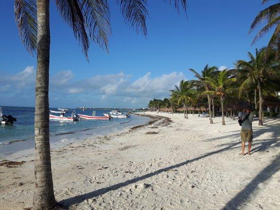 Hotel Akumal Caribe: morgens wenn der Strand noch leer ist