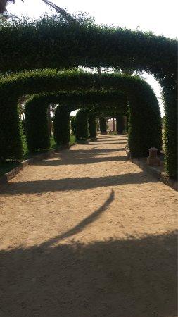 Gemma Resort: Semplicemente fantastico!!