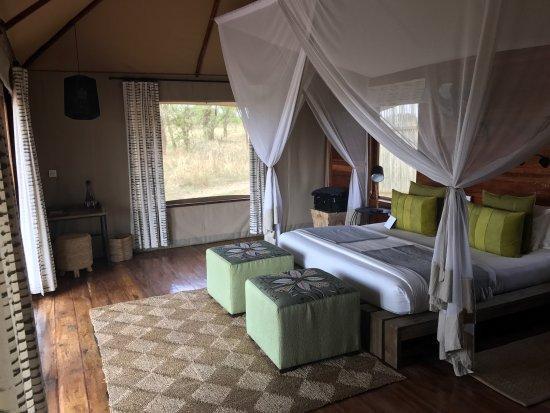 Sayari Camp, Asilia Africa: photo1.jpg