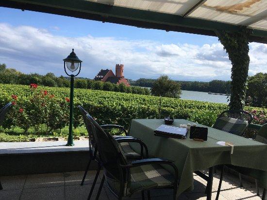 Eltville am Rhein, Niemcy: Blick auf Rhein und Burg Crass