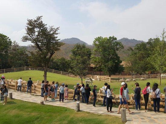 Khao Yai National Park, Thailand: Everyone enjoy visiting here
