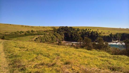 Kiama, أستراليا: A littl ebit in from Love's Bay