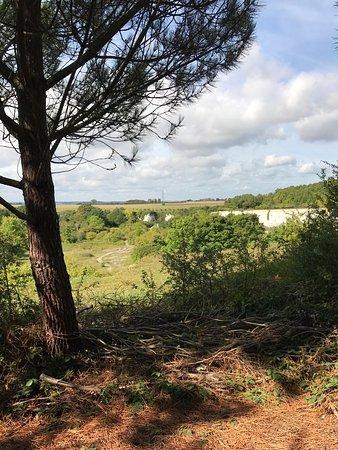 Monkton Nature Reserve: photo6.jpg