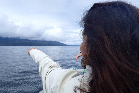 Craig, AK: Whale spotting on a summer afternoon near Prince of Wales Island Alaska.