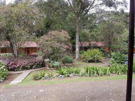 San Gerardo de Dota, Kosta Rika: Hotel de Montaña y Restaurante Suria