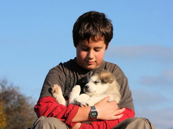 Ely, MN: Kids & our lovable sled dog pups are inseparable!