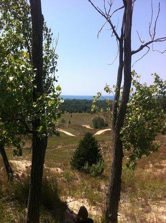 Saugatuck, MI: View From Top of Dune Stop