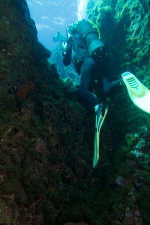Bubbles dive centre marsalforn malta top tips before for Gozo dive centres