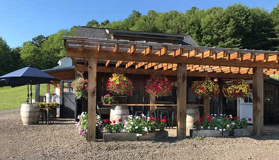 Fly Creek, NY: Pail Shop Vineyards tasting room and outdoor bar