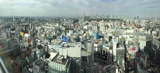 Shibuya Excel Hotel Tokyu : The view from the top floor resturant / breakfast