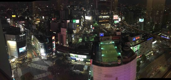 Shibuya Excel Hotel Tokyu : The view from the room
