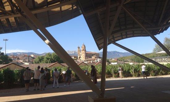 Эльсьего, Испания: pequeño viñedo